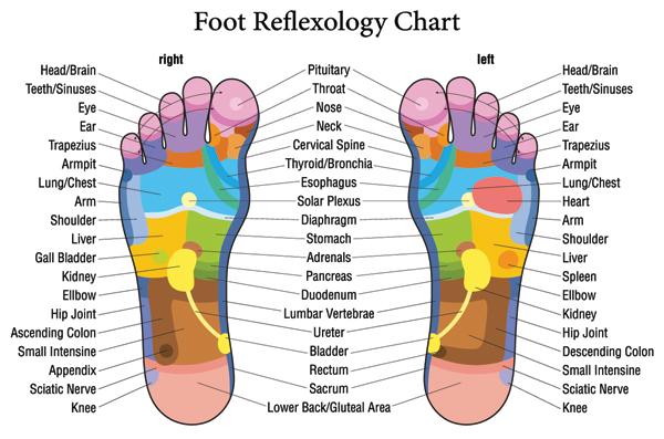 feetDiagram